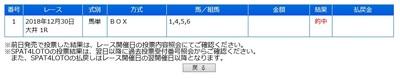 20181230大井1R.jpg
